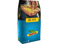 Семена кукурузы ДК 315 (Монсанто)