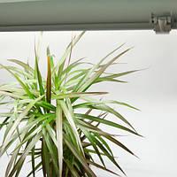 FULL x2 SPECTRUM LED Фито светильник для растений 36W