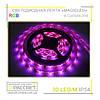 Светодиодная лента RGB Magicled 5050 30 LED 7,2W/m IP54 (в силиконе)