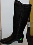 Высокие кожаные женские сапоги на каблуке, сапоги от производителя модель БМ747К, фото 3