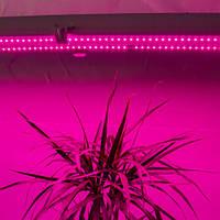 Светодиодный фито светильник для растений R:B=5:1 (5 красных:1 синий) 36W