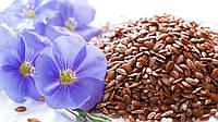 Лен семена лечебные,пищевые