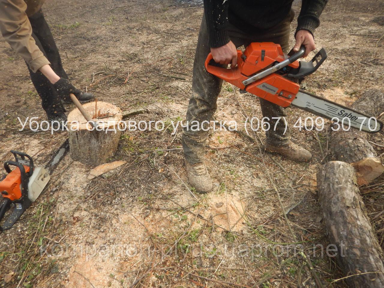 Уборка участка от деревьев