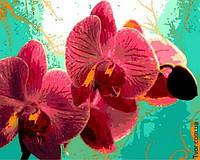 Картина по номерам Тропическая орхидея 40х50см Mariposa
