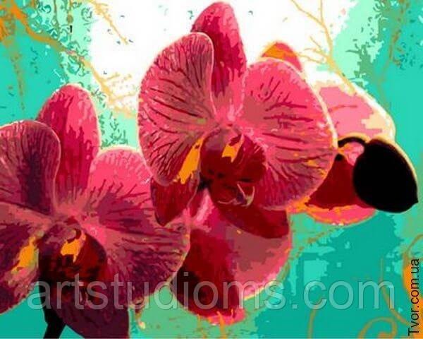 """Картина раскраска по номерам """"Тропическая орхидея"""" набор для рисования - Интернет магазин Наборов для творчества и Товаров для Рукоделия - ArtStudioMS.com в Павлограде"""