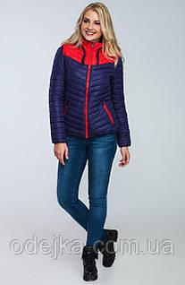 Куртка женская демисезонная H18-18(s-xxl)