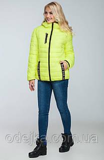 Куртка женская демисезонная H18-7(s-xxl)