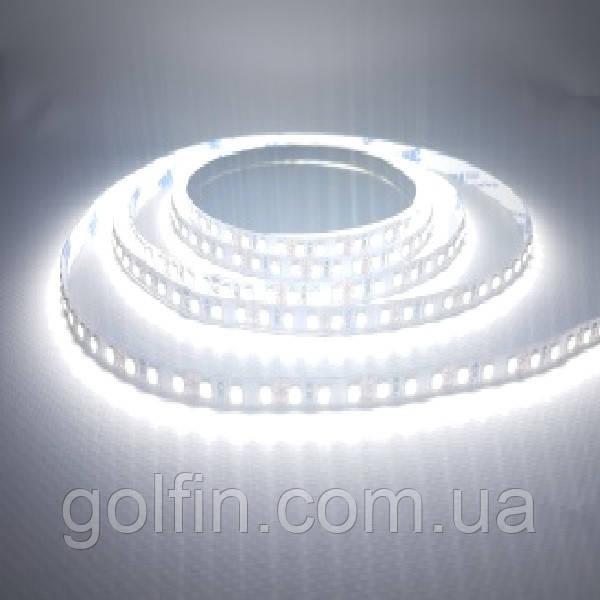 Світлодіодна стрічка SMD2835 120 д/м, IP33 (CW) 5м
