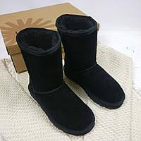 Женские ботинки UGG натуральная замша (35, 36, 37, 38, 39, 40 размеры)