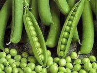 Семена Горох сахарный Динга 5 кг Satimex