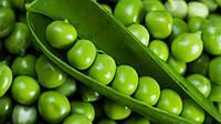 Семена Горох сахарный Амброзия 5 кг Satimex