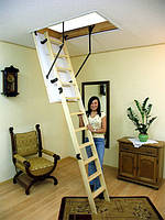 Чердачные лестницы OMAN Termo Long