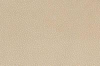 Обивочная ткань для мебели Никсон ЛТ беж (NIKSON LT BEIGE)