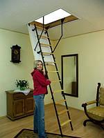 Чердачные лестницы OMAN Mini