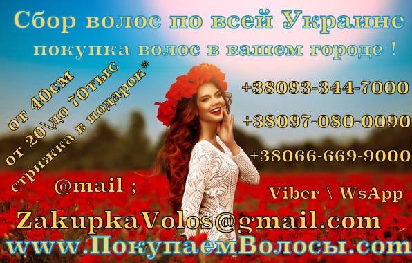Продать волосы в Днепре дорого Скупка волос Днепр, фото 2