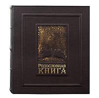 Родословная книга в кожаном переплете 620-07-04