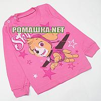 Детский реглан (джепмер,свитшот,футболка с длинным рукавом) р.80-86 для девочки ткань 100% хлопок 3804 Розовый