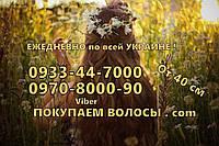 Покупка волос в Одессе