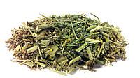 Желтушник серый трава, фото 1
