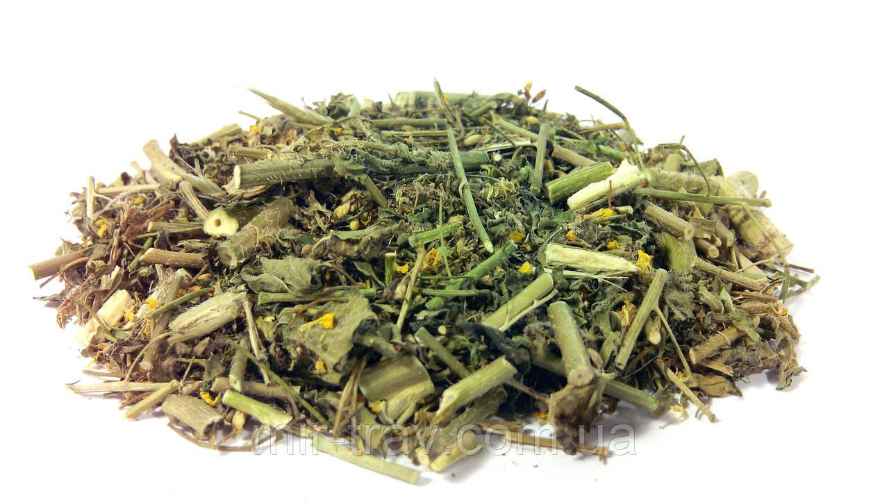 Желтушник серый трава