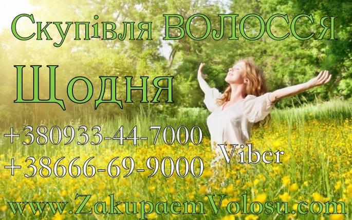 Продать волосы в Полтаве Скупка волос Полтава, фото 2