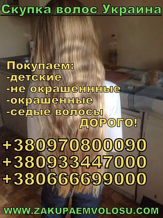 Продати волосся в Вінниці , фото 2