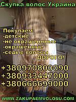Продати волосся в Вінниці