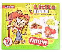 """Набір дитячих карток """"Овочі"""", 15 шт у наборі (952795) на укр.мові"""
