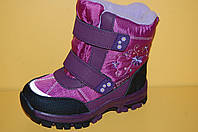Детские термоботинки фиолетовые для девочек ТМ Том.М код 1610 размеры 28-33