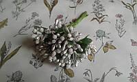 Складні тичинки (незабудки ) - срібні