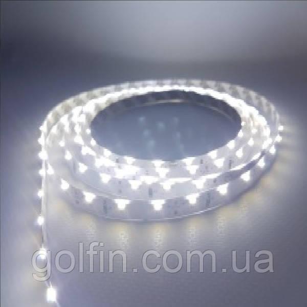 Світлодіодна стрічка SMD335, 60 д/м, IP33 (CW) 5м