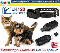 PET LK120 Ошейник с Трекером GPS Tracker для Кошек Собак Вес 23гр ip67