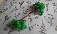 Калина цукрова - зелений колір. 5дротів(10кульок)