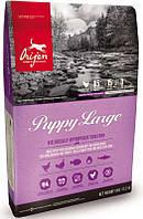 Orijen (Ориджен) Puppy Large корм для щенков крупных пород 11.4кг.