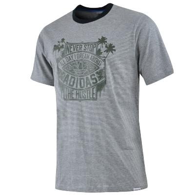 Adidas футболка AS Tee_5 Art Erkek Skatebording