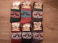 Носки женские зимние Rabbit wool (ангора махра) опт