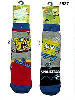 Детские носки для мальчика. р. 31-34