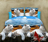 Комплект постельного белья XHY664 двуспальный (TAG polycotton-326/д)