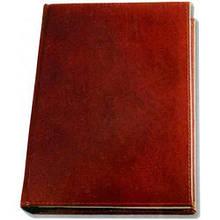 Діловий щоденник Brisk Office ЗВ-55 Sarif, датований (2016), червоно-коричневий, A5