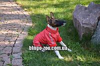 Комбинезон для собаки утепленный (флис), фото 1