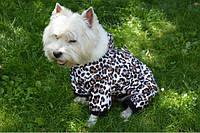 Комбинезон для собак Тигрюля