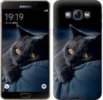 """Чехол на Samsung Galaxy A8 A8000 Дымчатый кот """"825u-135-481"""""""