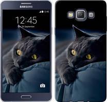 "Чехол на Samsung Galaxy A7 A700H Дымчатый кот ""825c-117-481"""