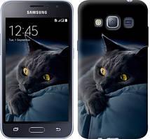 "Чехол на Samsung Galaxy J1 (2016) Duos J120H Дымчатый кот ""825c-262-481"""