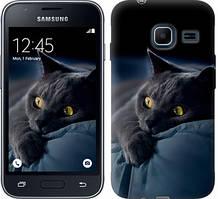 "Чехол на Samsung Galaxy J1 Mini J105H Дымчатый кот ""825c-258-481"""