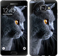 "Чехол на Samsung Galaxy A5 (2016) A510F Красивый кот ""3038c-158-481"""