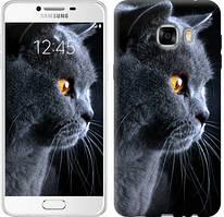 """Чехол на Samsung Galaxy C7 C7000 Красивый кот """"3038u-302-481"""""""