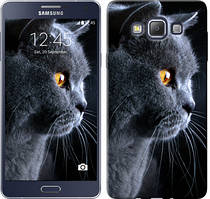 "Чехол на Samsung Galaxy A7 A700H Красивый кот ""3038c-117-481"""