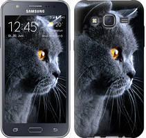 """Чехол на Samsung Galaxy J5 J500H Красивый кот """"3038c-100-481"""""""