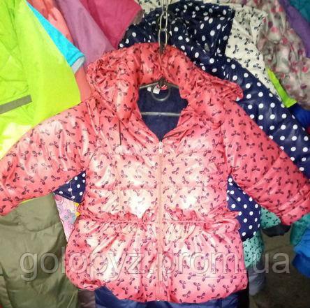 """Демисезонная курточка для девочки  - """"Голопуз"""" интернет-магазин детских товаров  в Виннице"""